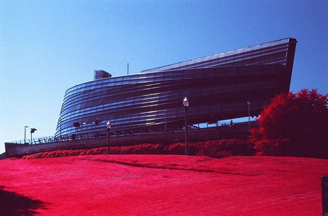 """Come on everybody, let's scream and yell. We're gonna do the shuffle and ring your bell."" . #Bears #ChicagoBears #Football #Stadium #Architecture #Chicago #Lakeshore #WindyCity . #Aerochrome #Aerochrome400 #Kodak #KodakAerochrome #EIR #KodakEIR #IR #Infrared #ColorInfrared #ExpiredFilm #Film #FilmIsNotDead #ShootFilm #35mm #FPP #FilmPhotographyProject #FPPInfrachrome #Infrachrome #ColorInfraredFilm #InfraredFilm"