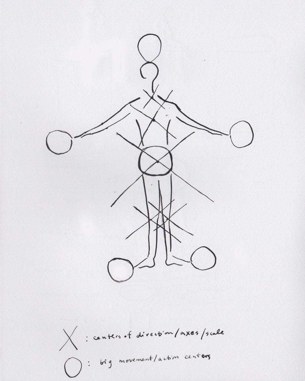 Body_diagram_A_edit.jpg
