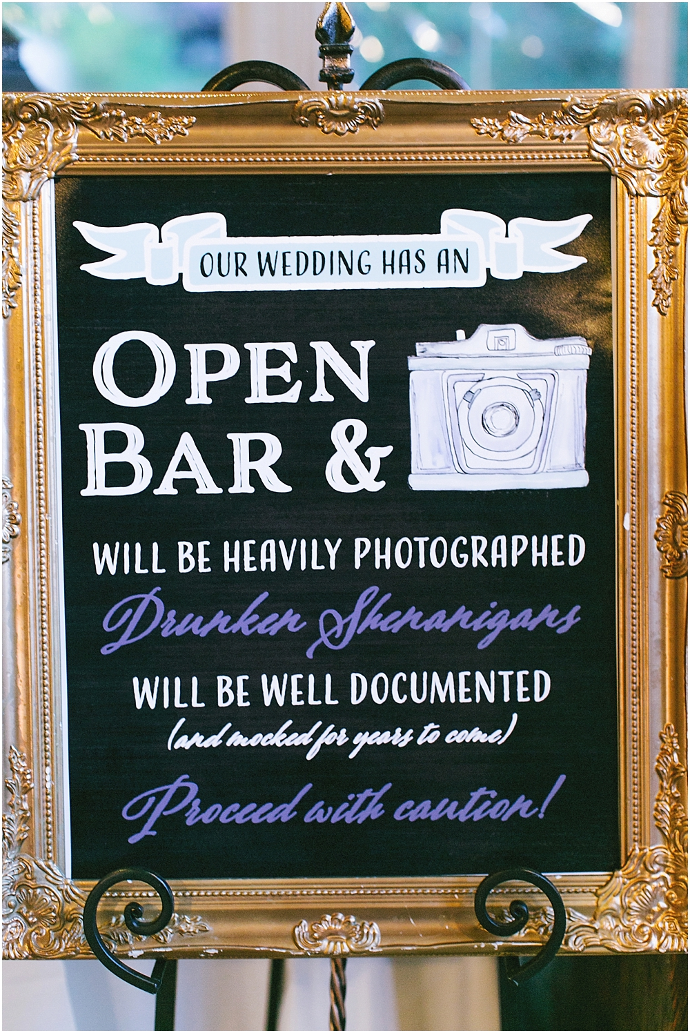 AshevilleDestinationMountainWeddingPhotographer_0218.jpg