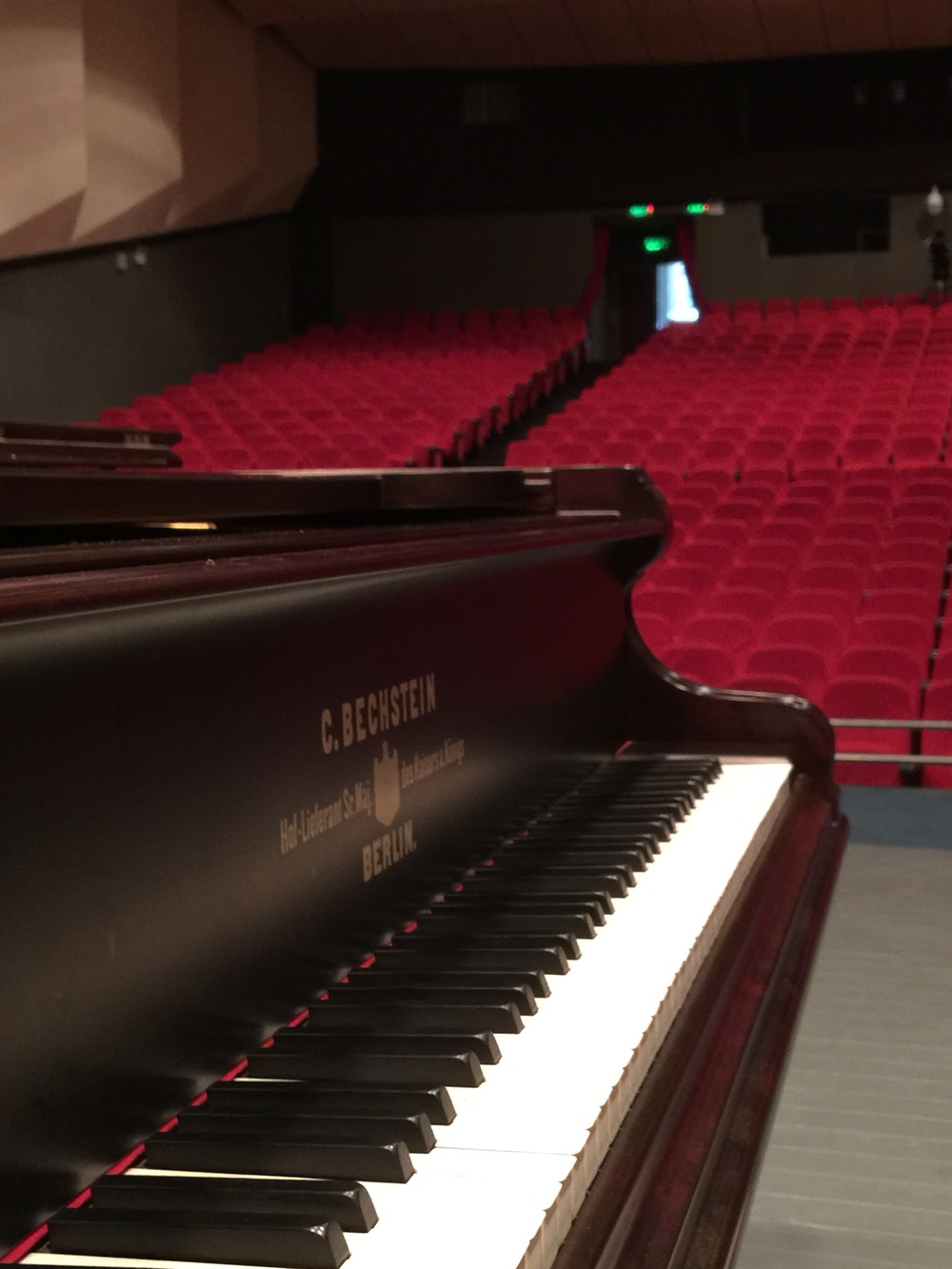 This lovely Bechstein concert grand was able to deliver inspiring color and tone palettes.
