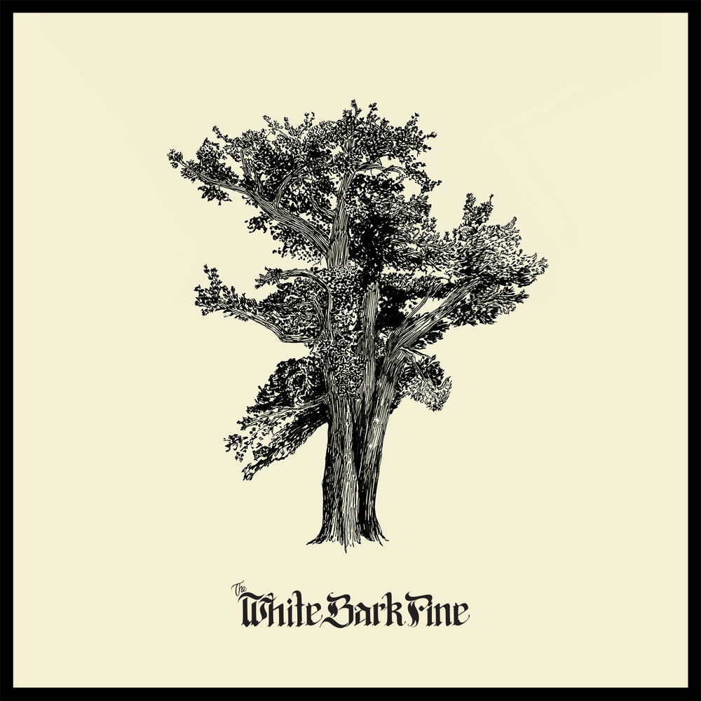 The white bark pine    The white bark pine   Album art