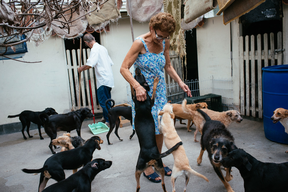 Edina Ferriera Prado, 70, (center) greets some of her many dogs in her backyard. She credits her dogs with helping her overcome depression. Rio de Janeiro, Brazil, 03-15-2015