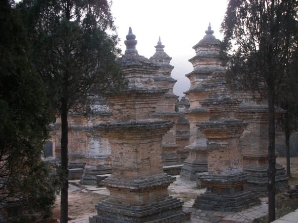 Pagoda Forest, where the monks from the Shaolin Temple are buried