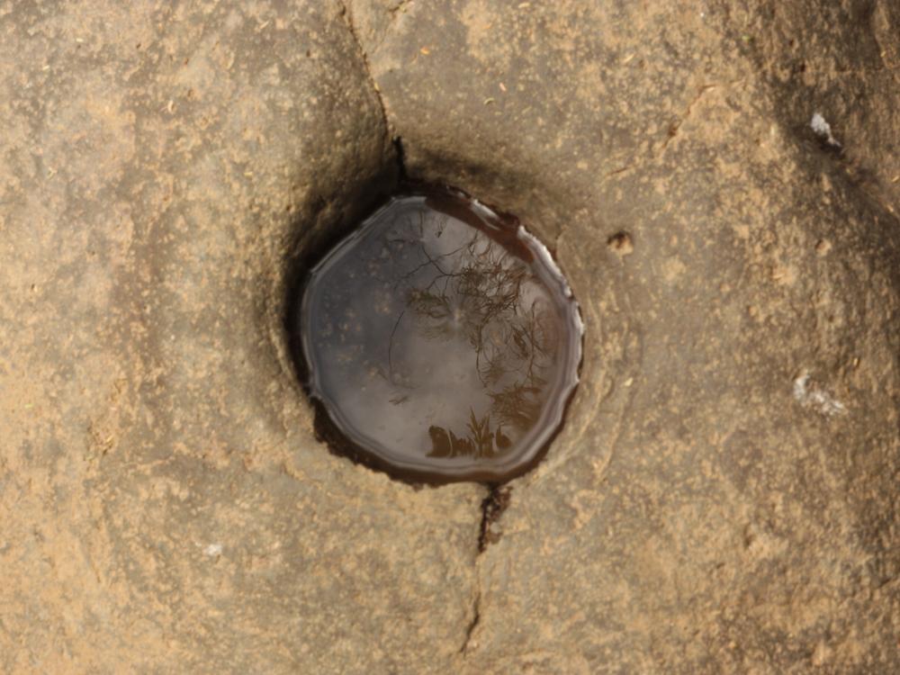 Amatlán-1.JPG