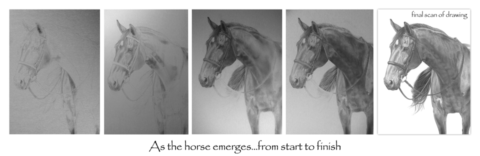 As the horse emerges... from start to finish