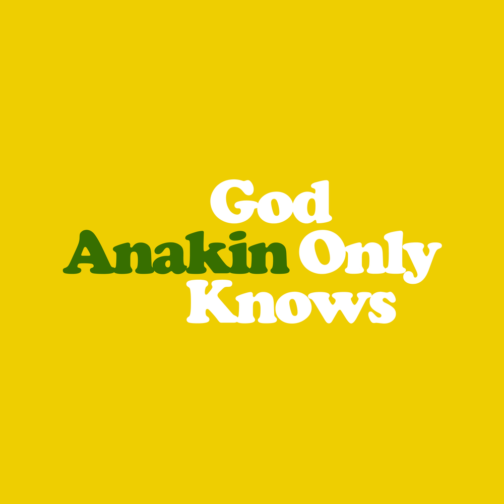Anakin - God Only Knows.jpg