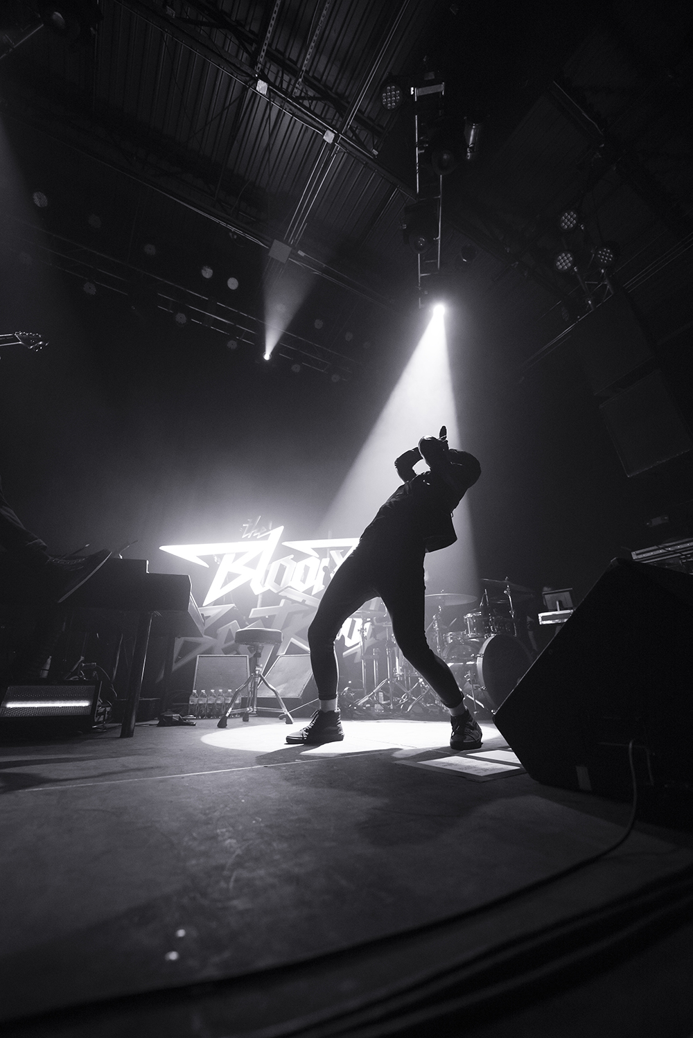 The Bloody Beetroots 14.jpg