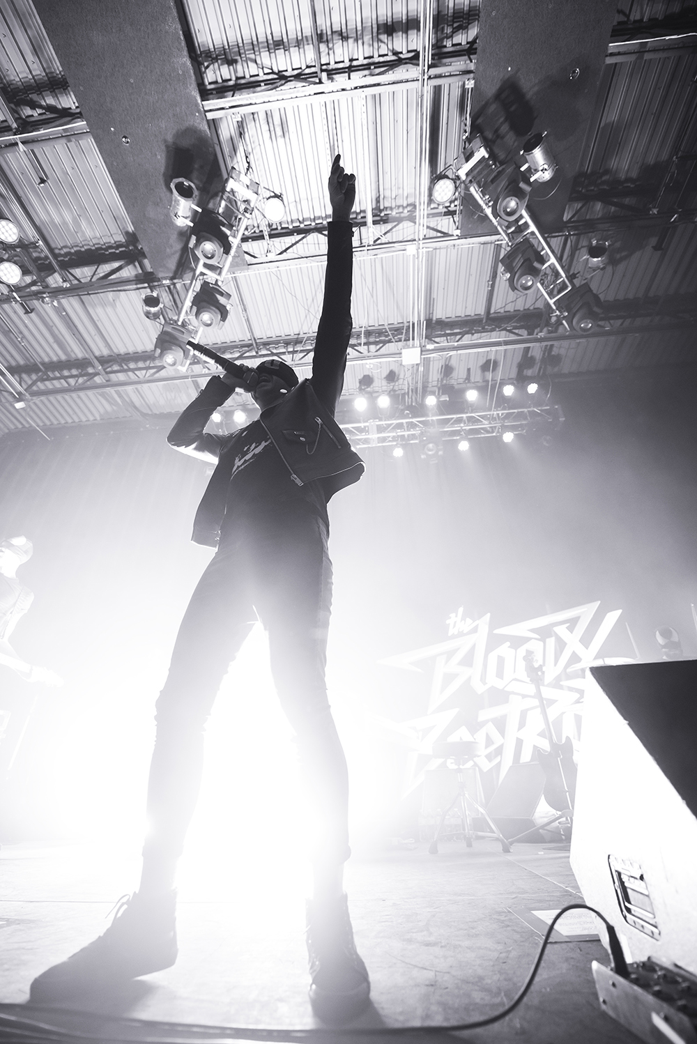 The Bloody Beetroots 17.jpg