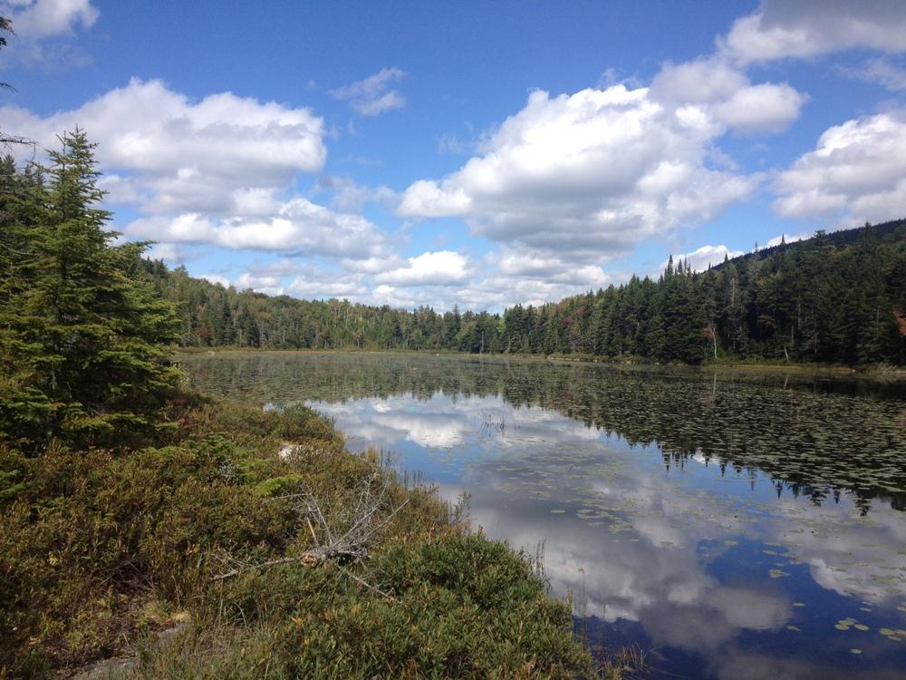 Old Speck Pond