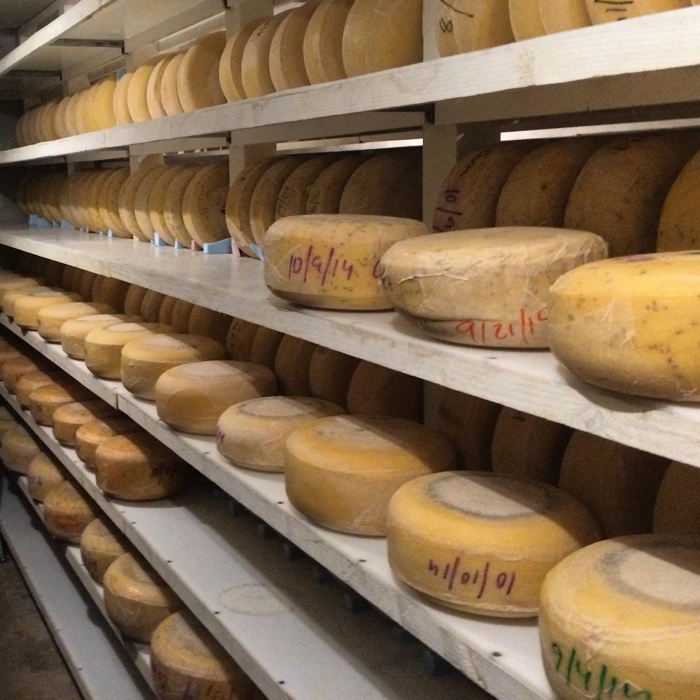 Cada Dia Cheese.jpg