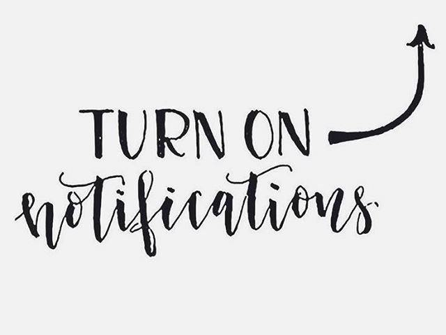 Tomorrow Instagram changes! If you would like to keep up with our posts and passion for selling coffee and ending sex trafficking, turn on your notifications!  #bellagooseclub #turnonpostnotifications