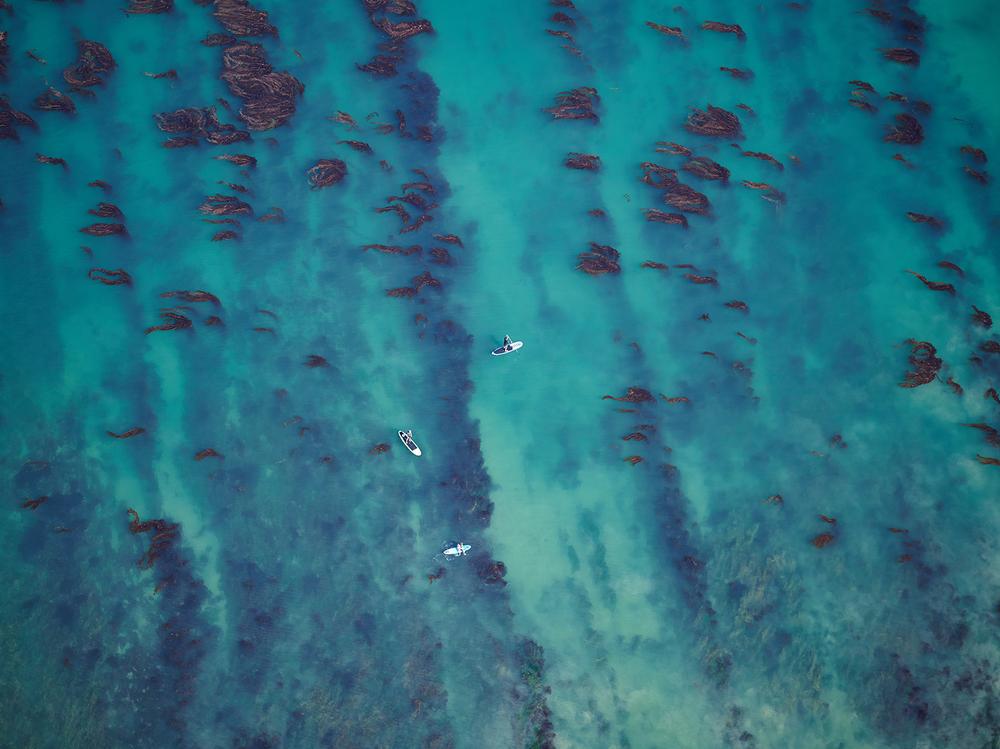 Aerial Plex Detail.jpg