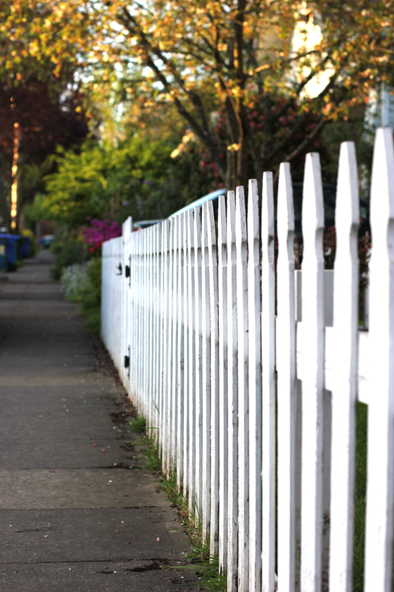 white picket fence, bikepretty, sidewalk, neighborhood, spring, grass, sunset
