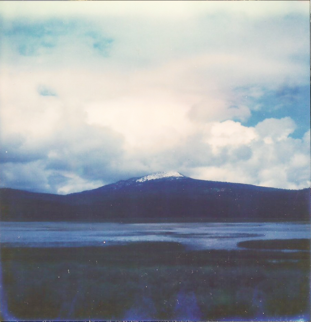 April 2016 - SX-70 Polaroid