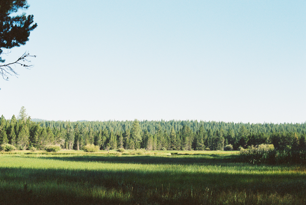 Along Deschutes River, Sunriver, Oregon - Portra 400 on Nikon N90s