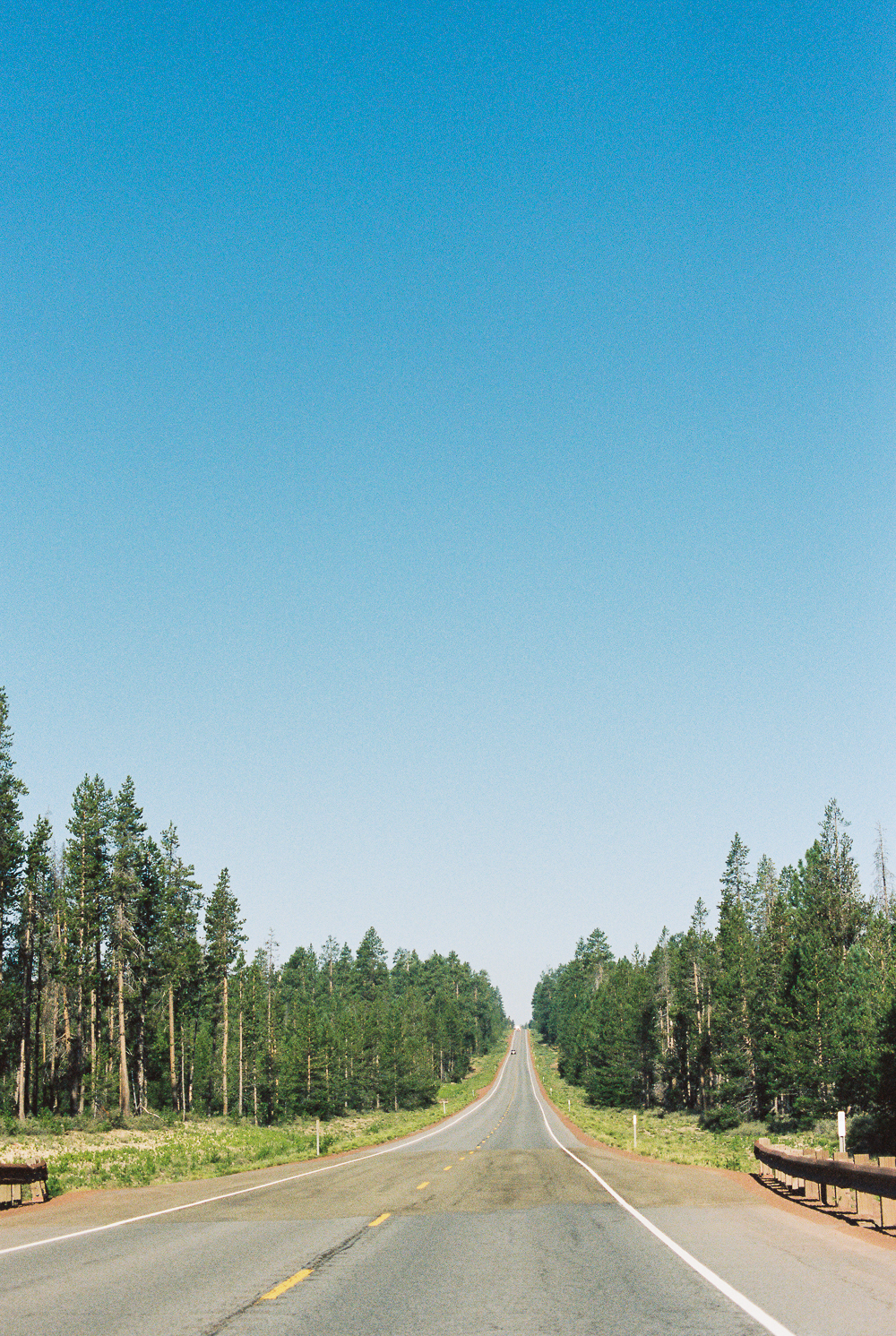 Road to Crater Lake - Portra 400 on Nikon N90s