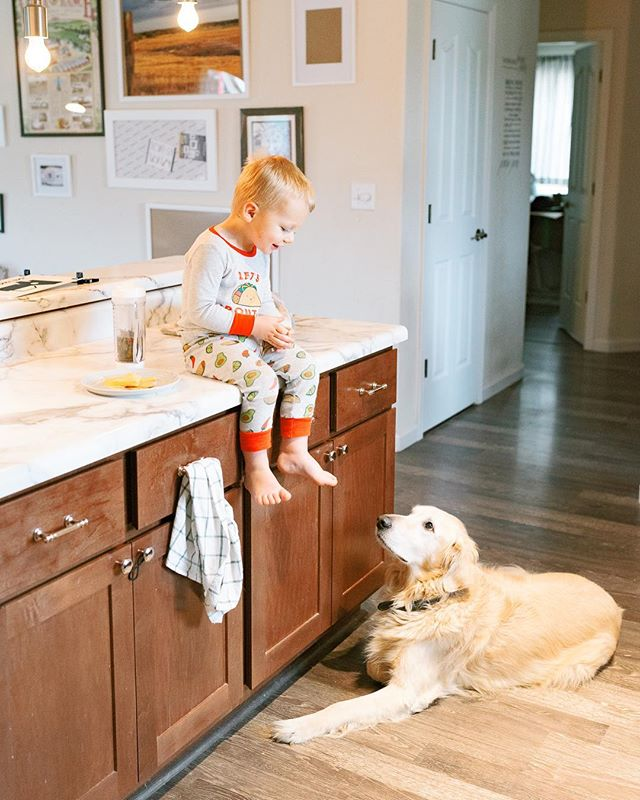 A boy & his dog 💕⠀ ⠀ Today I had fun spending some of my afternoon with this duo & their mama!