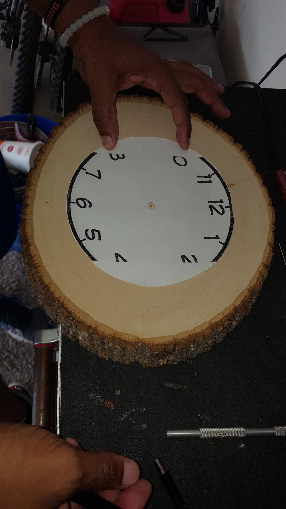 wood slice D.jpg