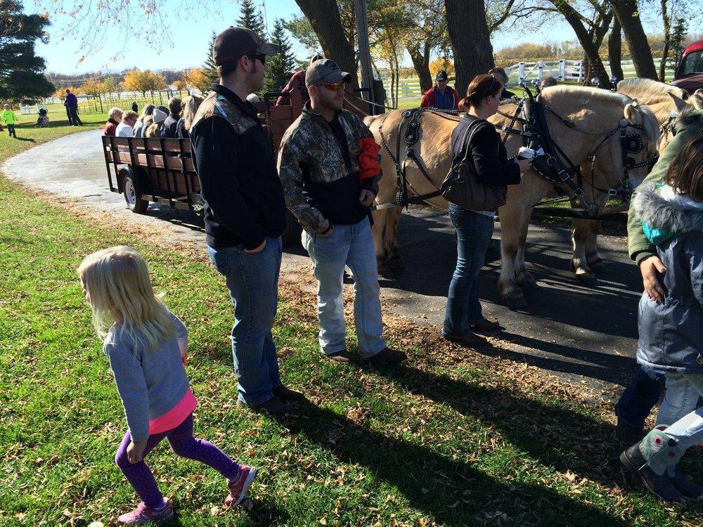 Free horse wagon rides around the vineyard