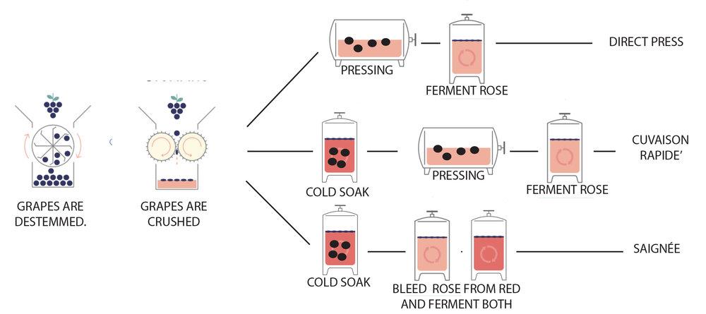rose process.jpg
