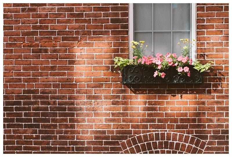 Boston__WindowFlowers_PattengalePhotography_0539.jpg