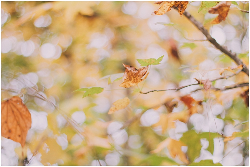 BlogPretty_Autumn_Leaves_Poetry_RichmondVA_PattengalePhotography_1398.jpg