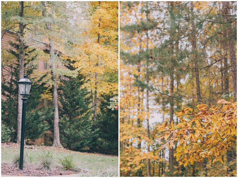 BlogPretty_Autumn_Leaves_Poetry_RichmondVA_PattengalePhotography_1397.jpg