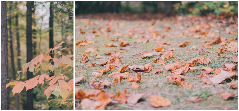 BlogPretty_Autumn_Leaves_Poetry_RichmondVA_PattengalePhotography_1401.jpg