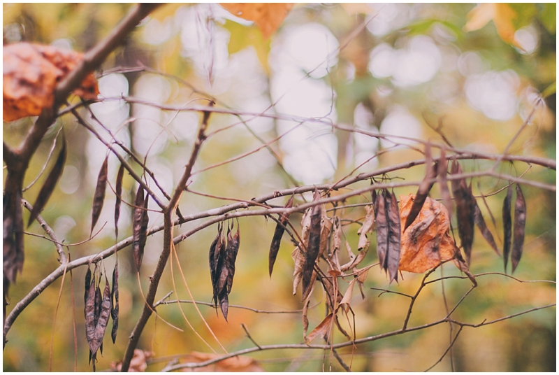 BlogPretty_Autumn_Leaves_Poetry_RichmondVA_PattengalePhotography_1399.jpg
