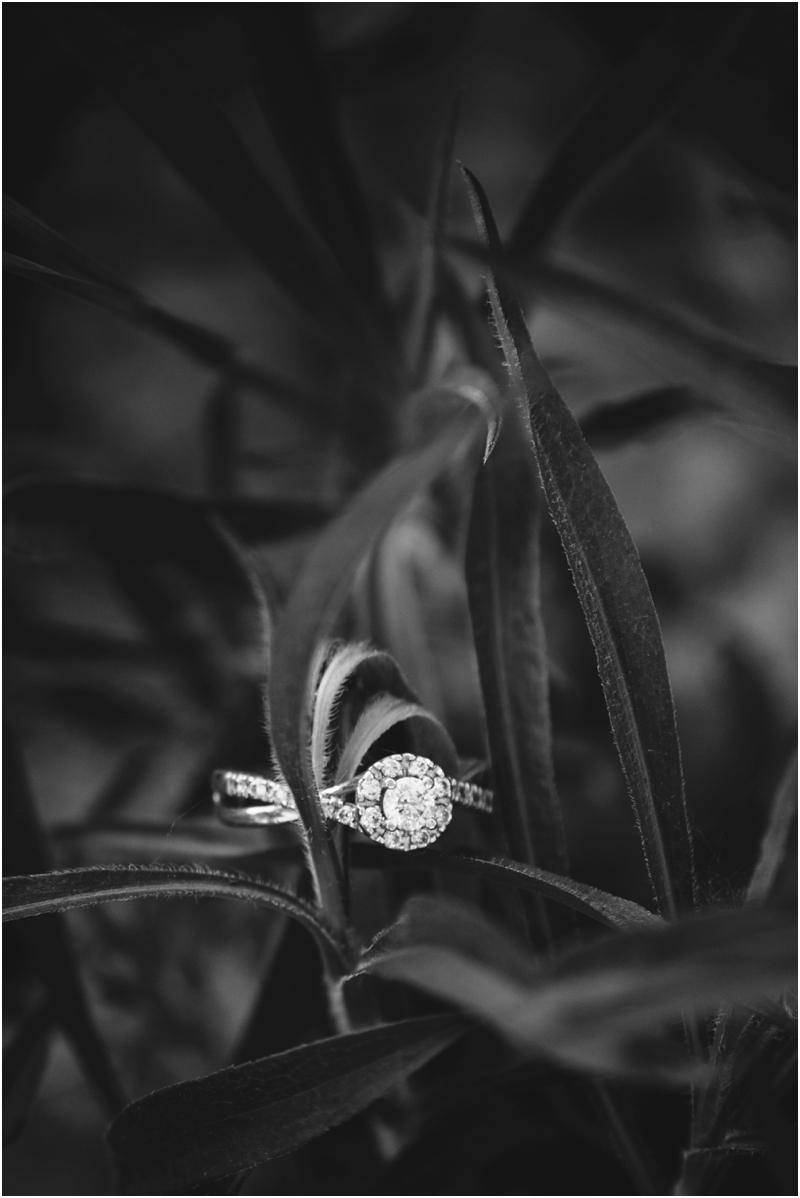 PattengalePhotography_TravelingPhotographer_Engagment_Couple_B&W_Richmond_KC_EastCoast_Love_2137.jpg