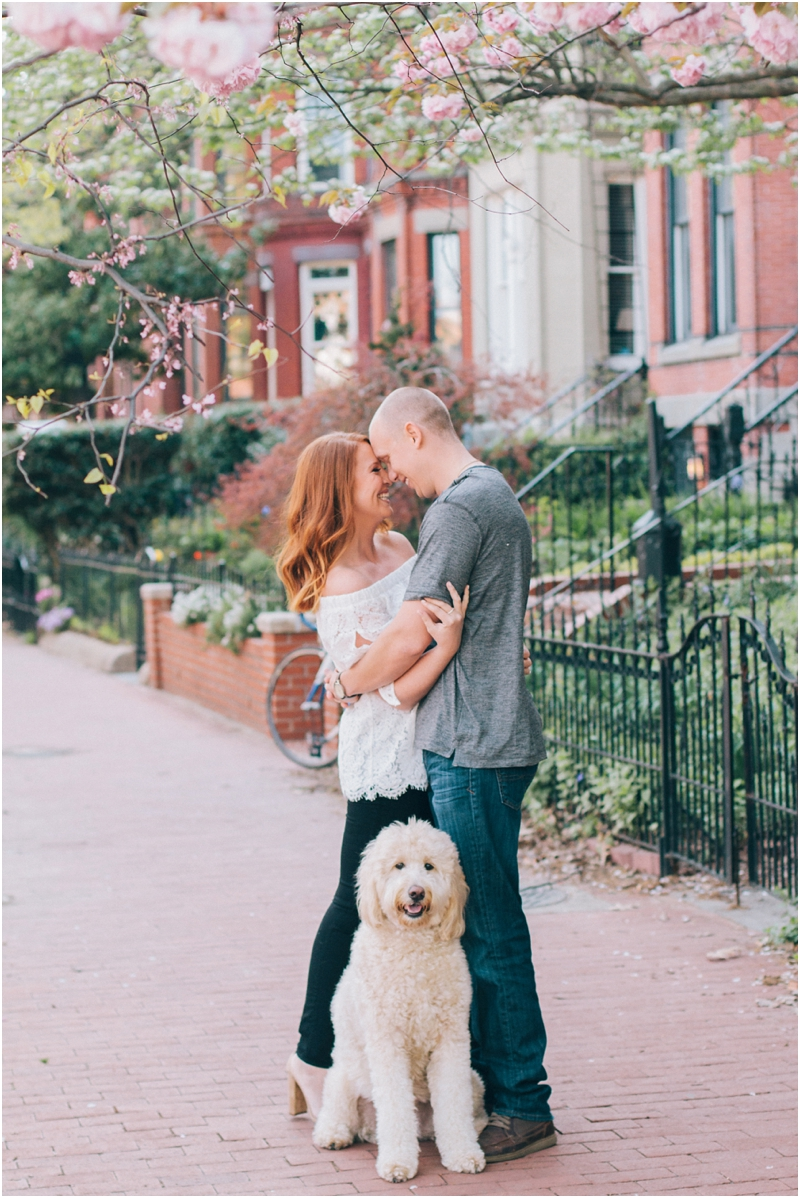 PattengalePhotography_WashingtonDC_Engagement_Lisa&Jimbo_Goldendoodle_LoganCircle_FDRMemorial_BlagdenAlley_Urban_District_2333.jpg