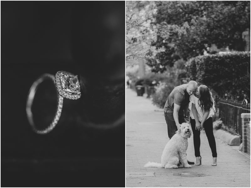 PattengalePhotography_WashingtonDC_Engagement_Lisa&Jimbo_Goldendoodle_LoganCircle_FDRMemorial_BlagdenAlley_Urban_District_2334.jpg
