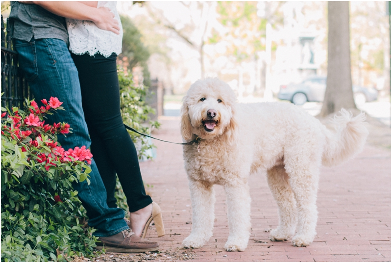PattengalePhotography_WashingtonDC_Engagement_Lisa&Jimbo_Goldendoodle_LoganCircle_FDRMemorial_BlagdenAlley_Urban_District_2335.jpg