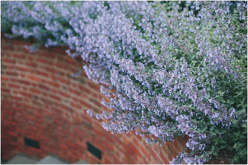 PattengalePhotography_hipstercouples_inlove_Engagement_Fiance_WashingtonDC_RichmondVA_TravelingPhotographer_Garden_Romantic_Proposal_Confessions_2690.jpg