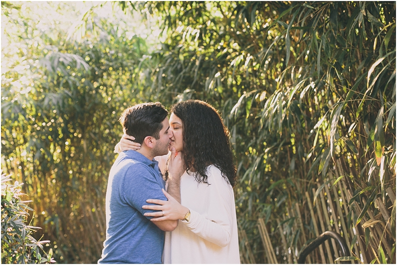 PattengalePhotography_Maymont_Proposal_David &Andrea_RichmondVA_engagement_Fall_StLouisPhotographer_PlanningYourProposal_Surprise_Boho_Hipster_Couple_3374.jpg