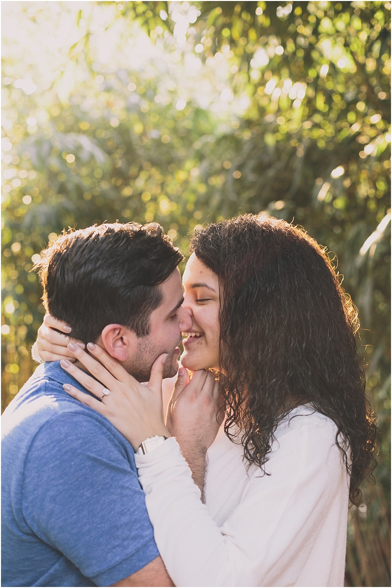 PattengalePhotography_Maymont_Proposal_David &Andrea_RichmondVA_engagement_Fall_StLouisPhotographer_PlanningYourProposal_Surprise_Boho_Hipster_Couple_3376.jpg