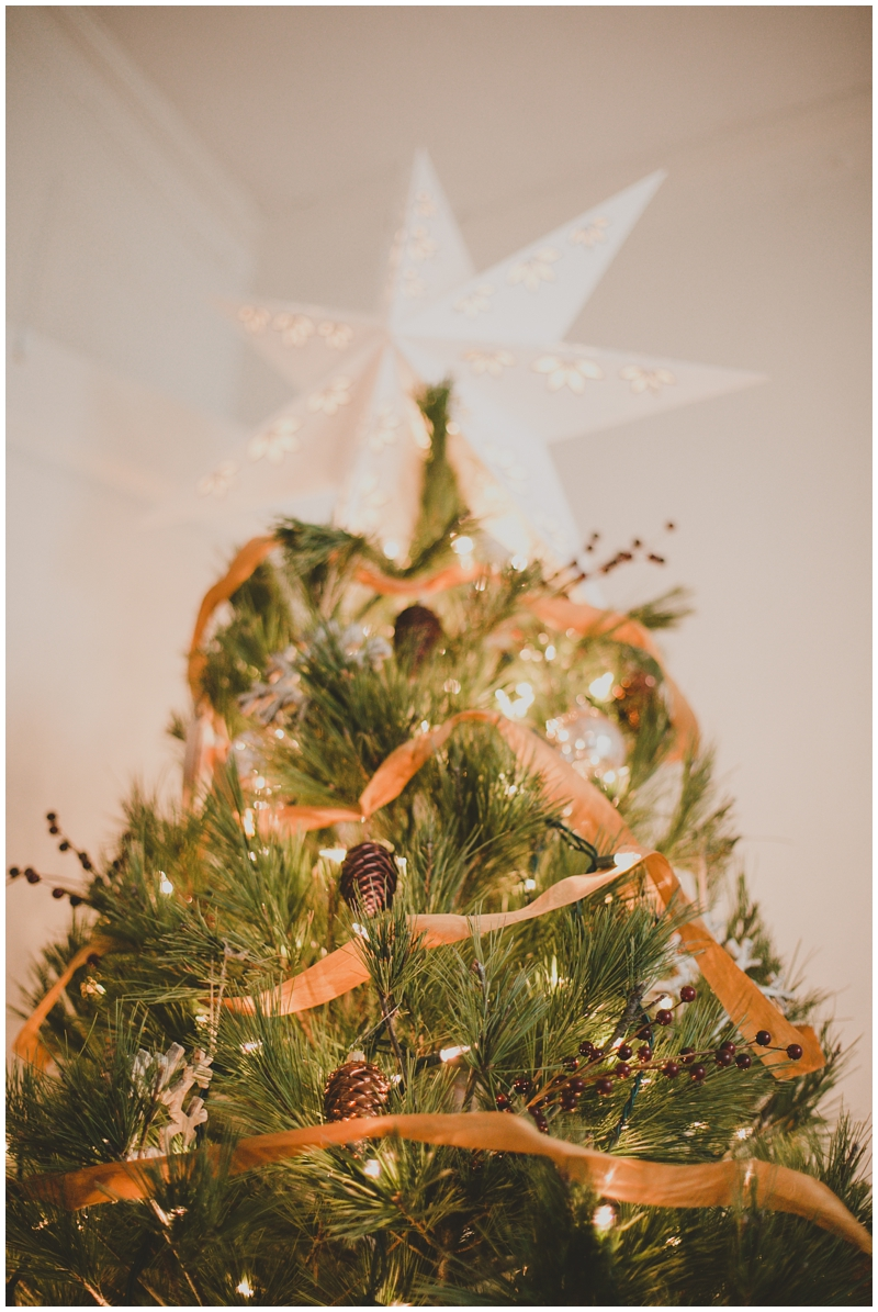 PattengalePhotography_Stephen&Me_Blunkalow_ChristmasDecor_FirstMarriedChristmas_apartmentliving_husband&wife_StLouisMO__0042.jpg