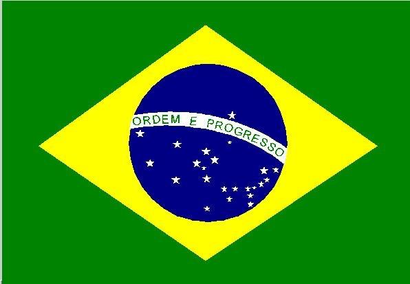 brazil-flag.jpg.jpg