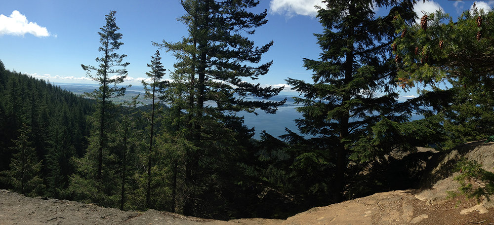 View from Oyster Dome, WA.