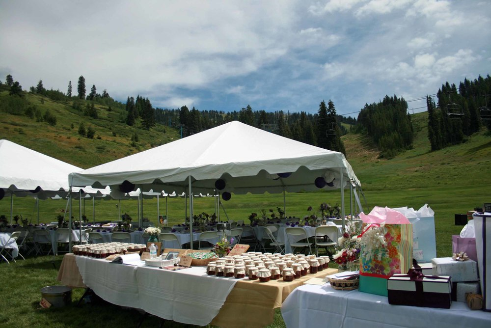 A2011WeddingBrundage.jpg