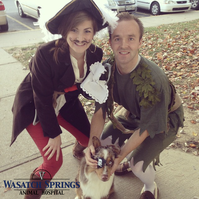 Wasatch Springs Animal Hospital Halloween