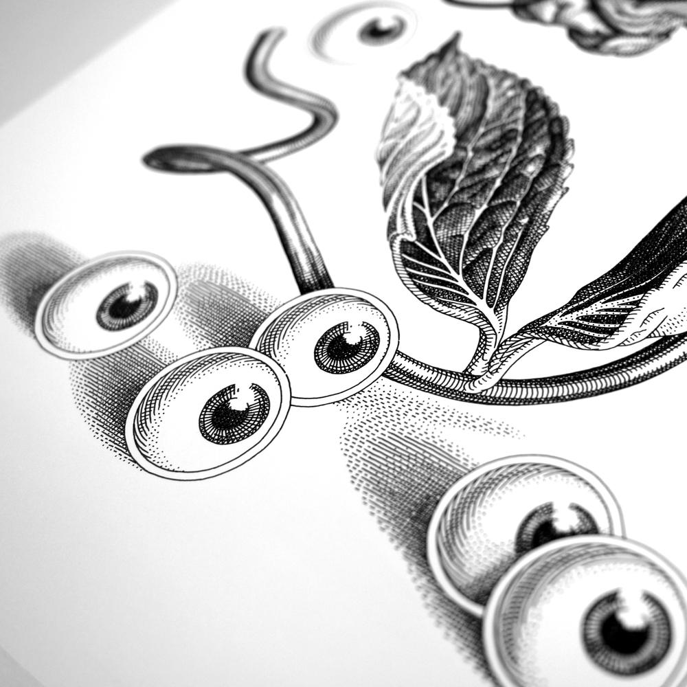OliviaKnapp-LookingBack-Detail