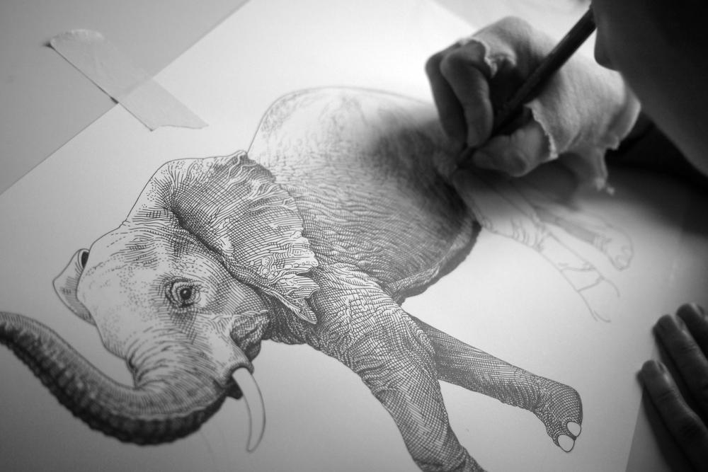 Elephant WIP2.jpg
