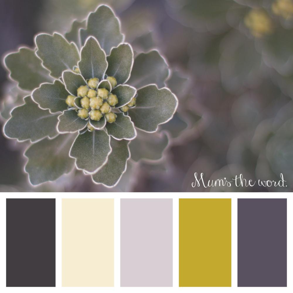 mum-color-palette