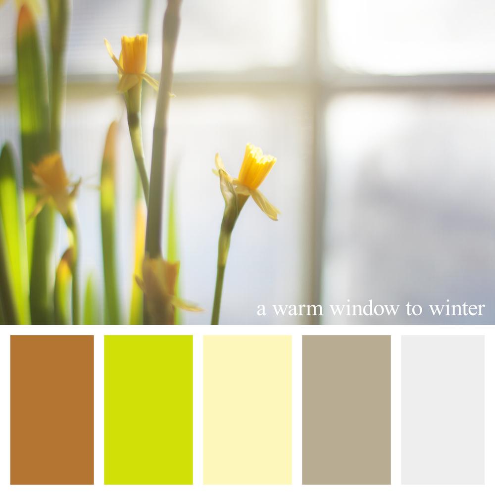 daffodil-winter-color-palette.jpg