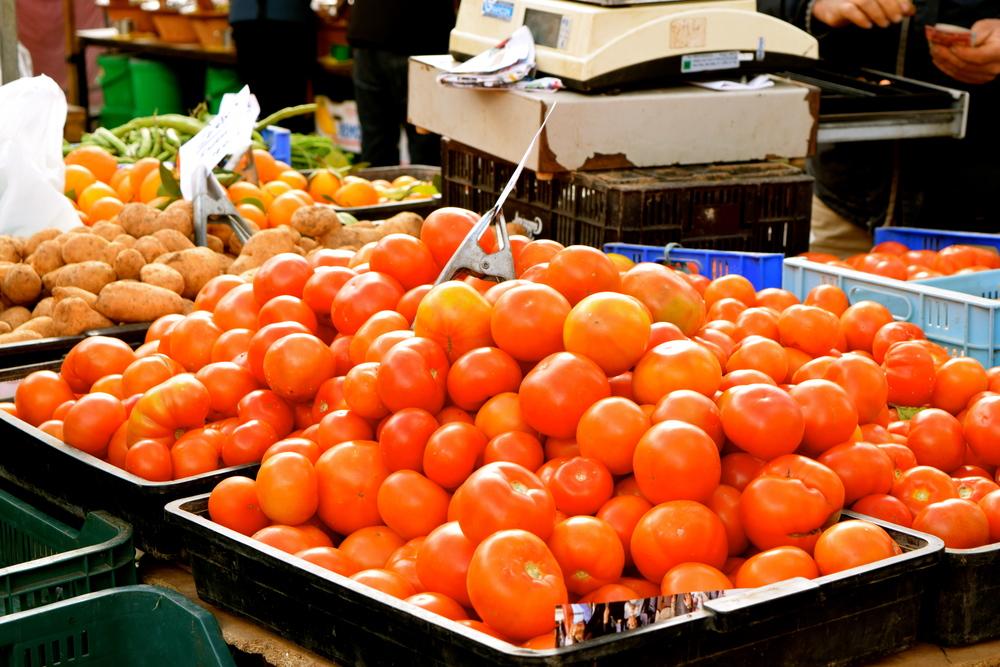 tomatosinsantamaria