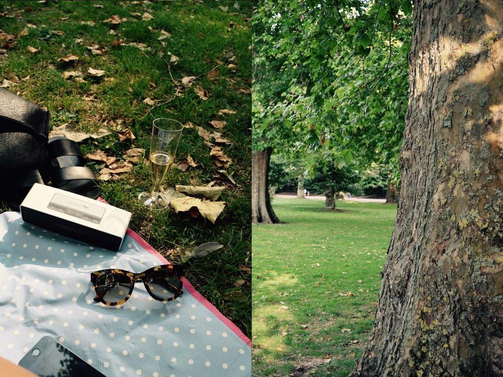 picnicessentials