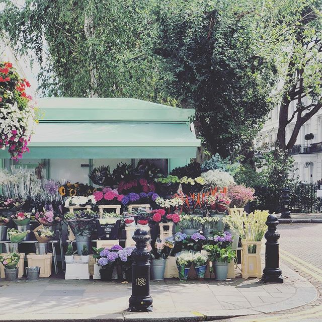 Roadside blooms 💕 #chelsea #london #travel