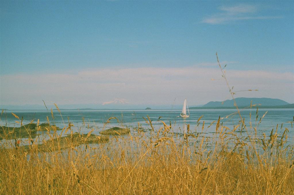 The view from Brook's Point on Pender Island, BC | Shot on Fujifilm 200 w/ Canon AE-1