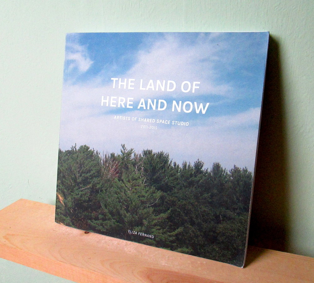 """This catalog chronicles the adventures of resident artists in the Michigan beach town of Pentwater, over the course of a five-year experiment in collaborative art-making and small town explorations. The Shared Space Studio Artist-in-Residence Program operated seasonally from 2011 to 2015, offering facilities and support in a secluded and beautiful setting, with the chance to meet and exchange with other artists. Artists from across the US and Canada made new work inspired by the environment and fostered by the facility, while engaging the local community, building up the studio, and going to the beach. In the summer of 2016, co-facilitators Eliza Fernand and Mary Rothlisberger curated a group exhibition of new work by past resident artists, and recreated the studio inside of the gallery, where they spent time working on this catalog. Fernand's candid weekly recaps of the artist's work and play adapted from blog posts, and contributed essays by visiting artists and Pentwater locals, are accompanied by photo documentation in a brilliant layout by Rothlisberger."